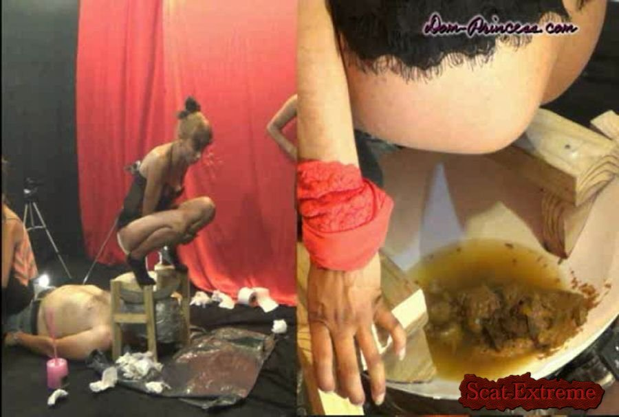 Britany, Chrystal, Christine, Naomi, Inka, Andrea, Carmen DVDRip Dark Toilet Ideas. The next Level [Scat, Piss, Femdom]