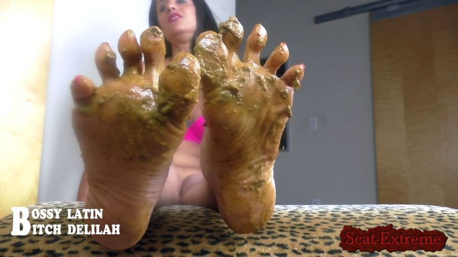 "Bossy Latin, Bitch Delilah HD 720p Scat Queen Delilah – Pretty ""SHITTY"" thing [Scat, Shit, Poop, Piss, Pee, Toilet, Milf, Mature, Foot, Feet, POV]"