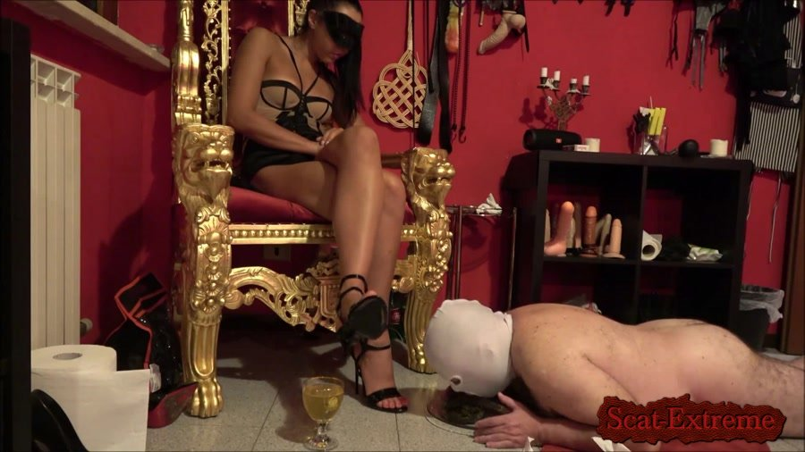 Mistress Gaia FullHD 1080p The training goes on [Femdom, Shitting, Scatting, Domination, Scat Porn, Humiliation, Face Sitting]