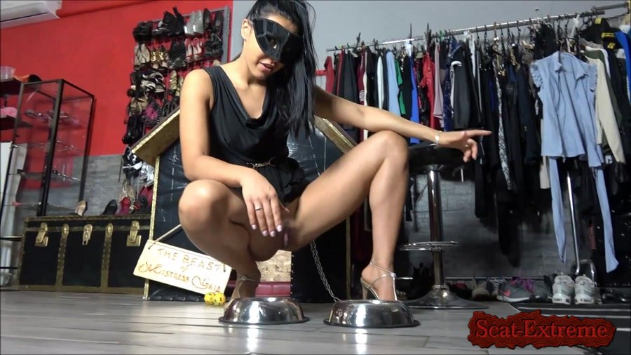 Mistress Gaia FullHD 1080p Enjoy your meal dog [Femdom, Solo, Scat Porn, Humiliation]