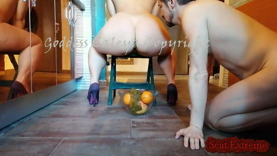 TOILETSLAVE4ALL FullHD 1080p Goddess Zaleya Ass Obsession for her Chocolate [Shitting, Scatting, Domination, Scat Porn, Humiliation, Face Sitting, Toilet Slavery]