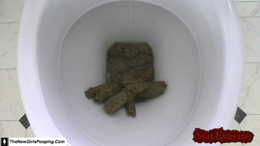 ShitGirl FullHD 1080p Toilet Destroyed In 5 Mins [Poop, Defecation, Extreme Scat, Scatology, Amateur]